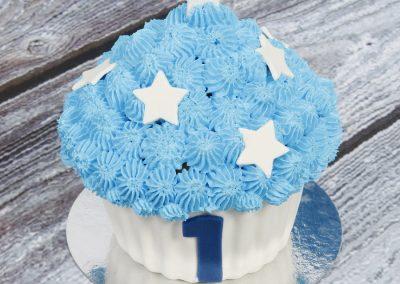 CakeSmash (2)