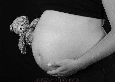 Zwanger (54)