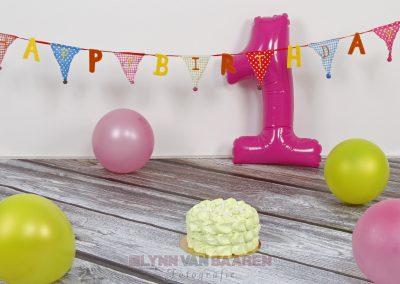 Cake_Smash_Settings 01 (8)